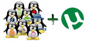 обновление utorrent для linux